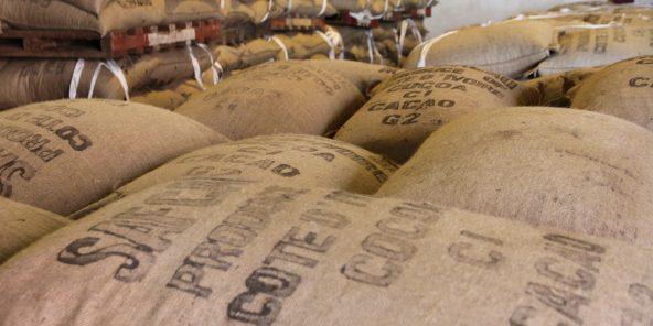 cote d'ivoire,cacoa,economie,Prime Group,,Saf Cacao,Fideca,FIDECA