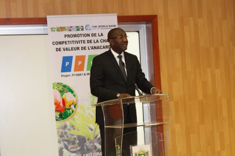 Côte d'Ivoire,Anacarde,Compétitivité