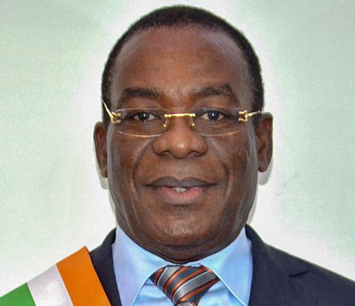 Côte d'Ivoire,Assemblée nationale,Affi N'Guessan,élections,Élections