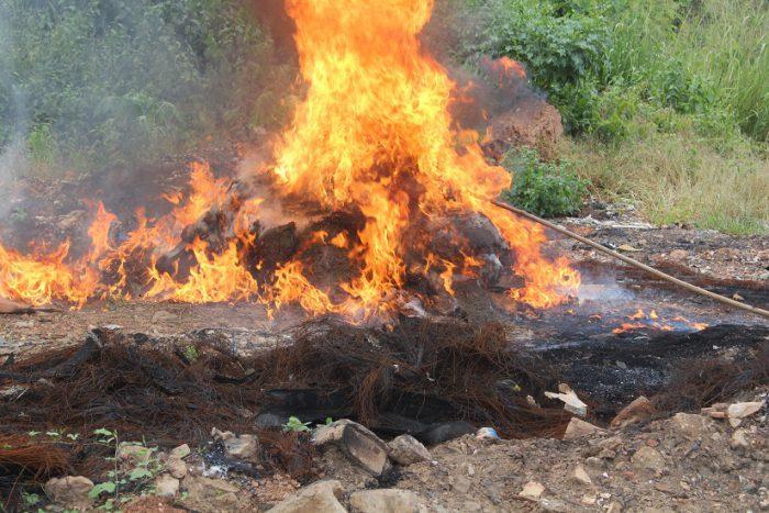 cote-divoire-douanes-de-noe-30000-tonnes-de-produits-prohibes-incineres