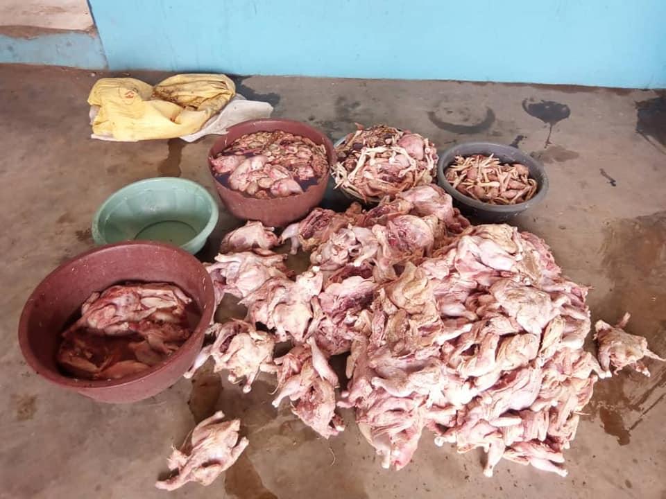 Côte d'Ivoire,333 poulets impropres à la consommation,police