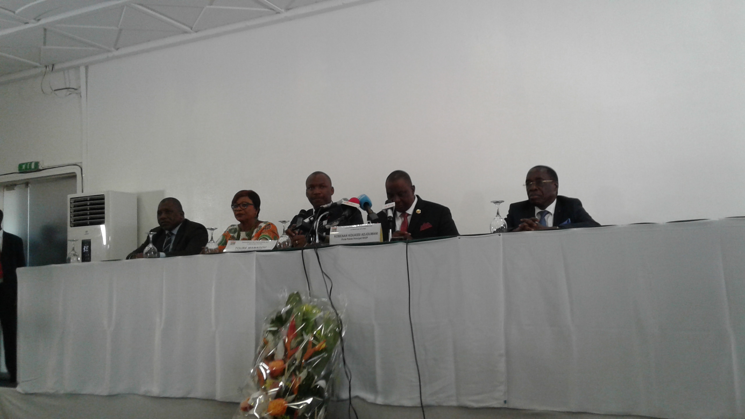 Orpaillage clandestin,RHDP,Pdci,Adjoumani,Bédié