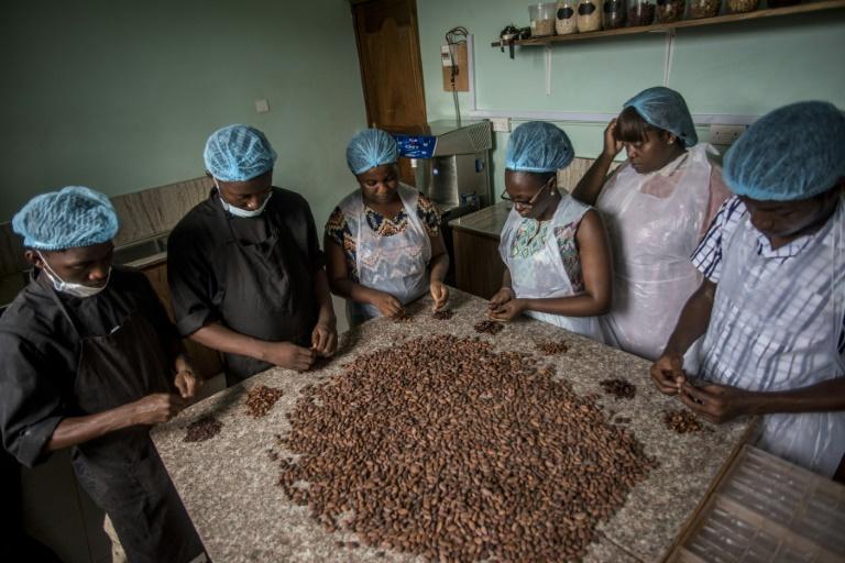 Ghana,Cacao