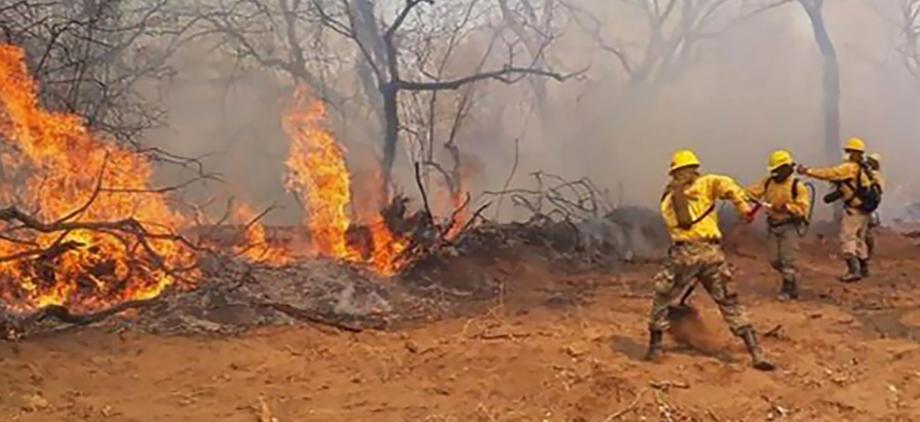 incendie,Amazonie,rejet de l'aide par le Brésil