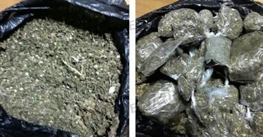 stupéfiants,drogues,cannabis,saisies