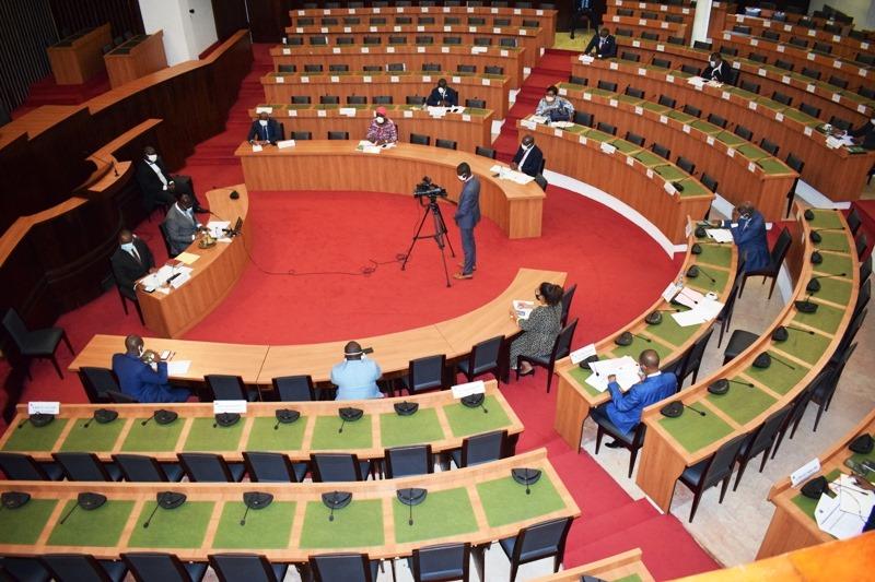 Assemblée nationale,travaux parlementaires,coronavirus