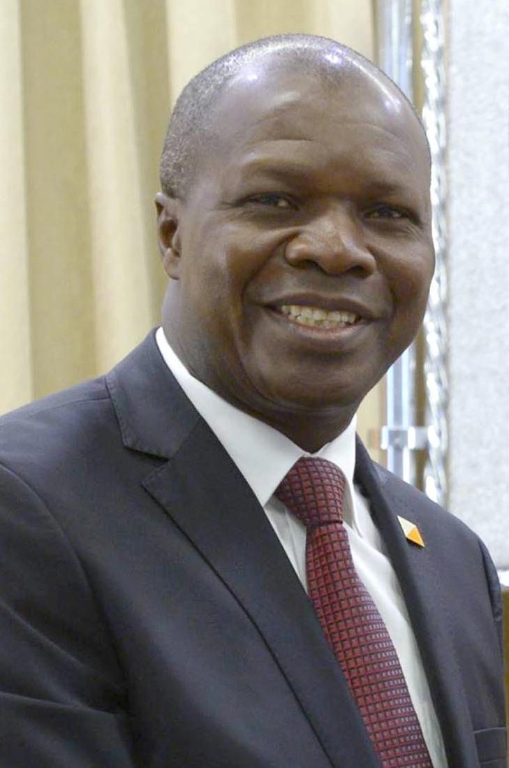 limogeage,Mabri Toikeusse,UDPCI,gouvernement