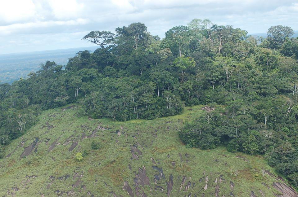 lutte-contre-la-desertification-et-la-secheresse-le-gouvernement-dresse-le-sombre-tableau-et-appelle-a-un-changement-de-comportement-declaration