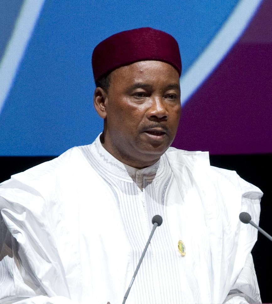 Reforme de la santé publique et du développement durable, speak ou Africa, président du Niger, Mahamadou