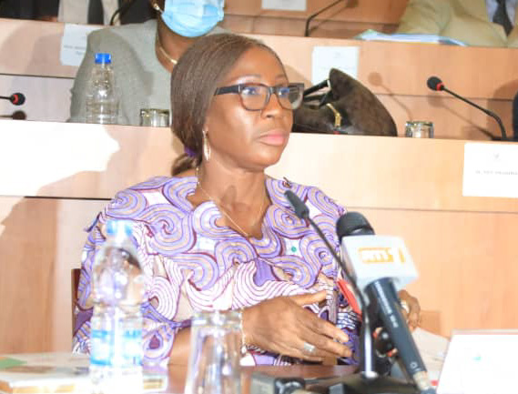 Education nationale,enseignement technique,formation professionnel,budget,1011 milliards FCFA,Assemblée nationale