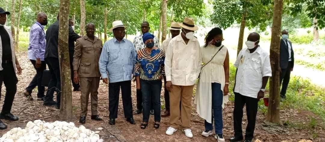 en-visite-chez-bedie-a-daoukro-laurent-gbagbo-a-bediekro-dans-les-plantations-du-president-henri-konan-bedie