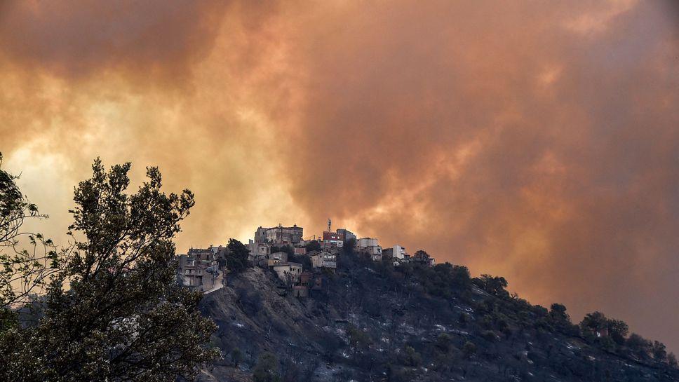 algerie-la-course-folle-des-incendies-meurtriers-fait-au-moins-69-morts-trois-jours-de-deuil-national