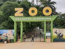 le-zoo-national-dabidjan-est-ferme-les-raisons